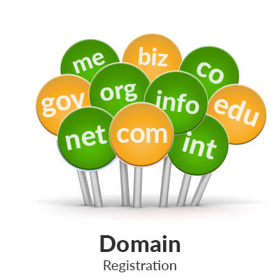 Domain Registrations in Pakistan