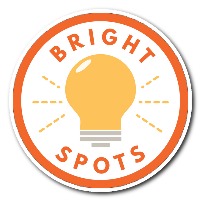 Bright Spots - Sticker