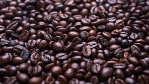 WHAT DOES FAIR TRADE MEAN FOR COFFEE?
