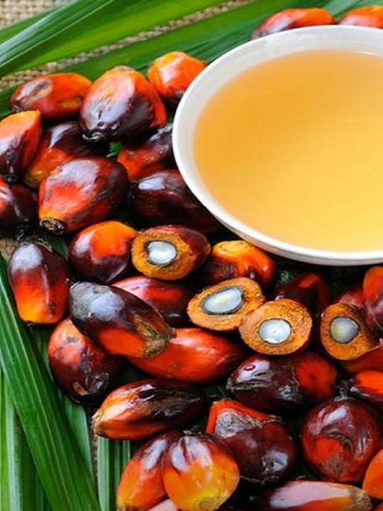 Using Palm Oil The Right Way