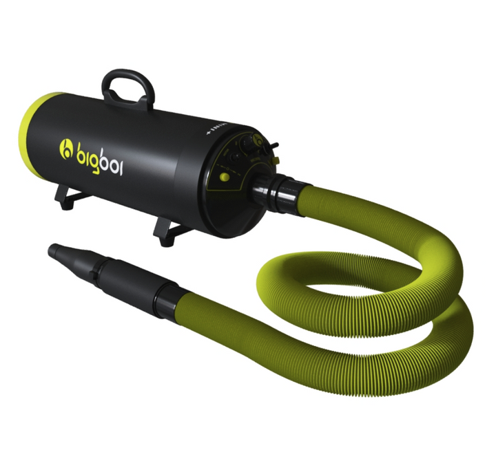BigBoi BlowR Mini Plus Touchless Blower Dryer