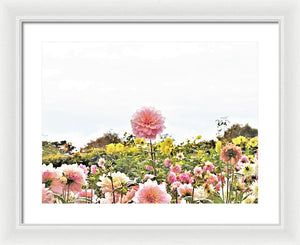 Above The Rest - Framed Print