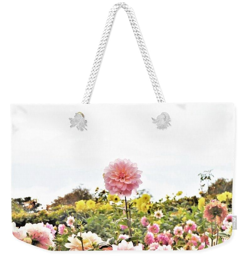 Above The Rest - Weekender Tote Bag