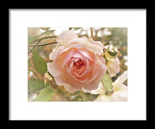 Blooming Beauty - Framed Print