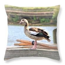 Composed Poise - Throw Pillow