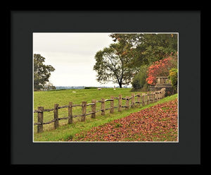 Fallen Leaves - Framed Print