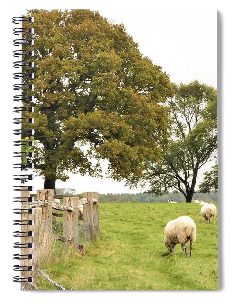 Grazing The Field - Spiral Notebook