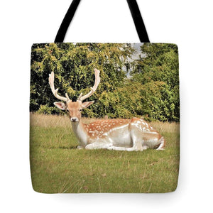 Magical Encounter - Tote Bag