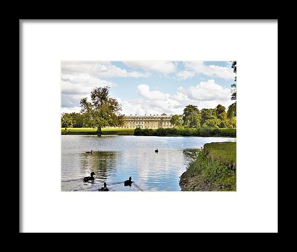 Morning Swim - Framed Print
