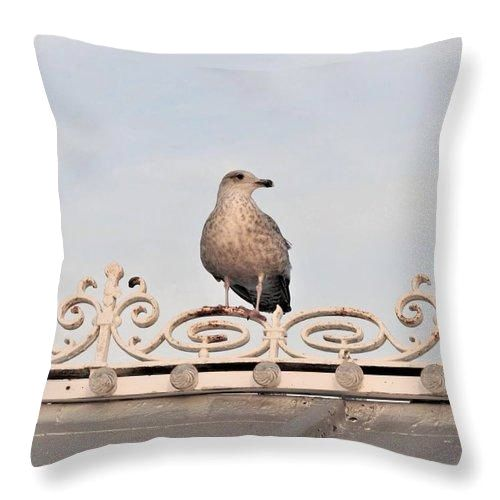 Perched Up High - Throw Pillow
