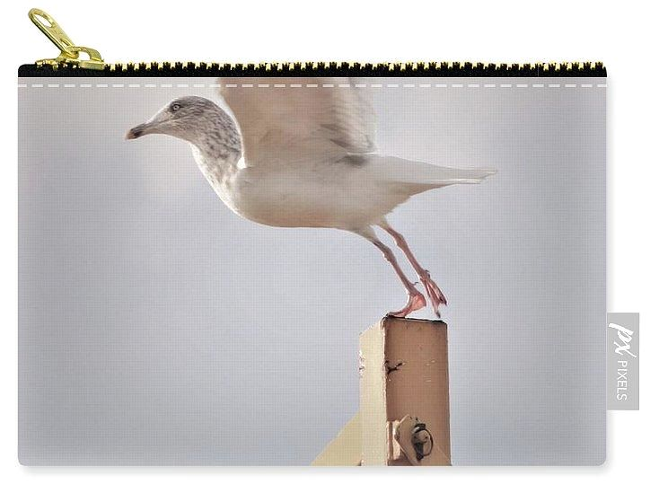 Ready To Fly - Carry-All Pouch