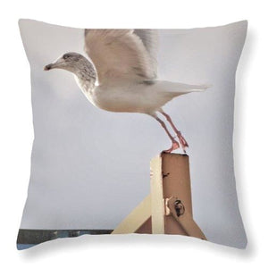 Ready To Fly - Throw Pillow