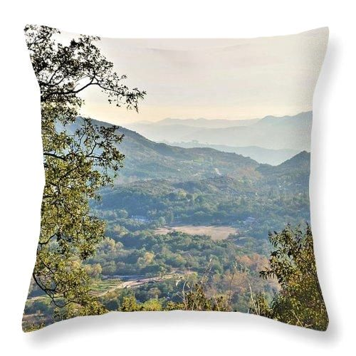 Wine Country - Throw Pillow