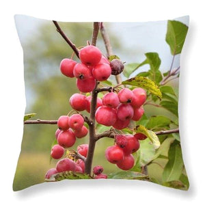 Wonders Of Seasons - Throw Pillow