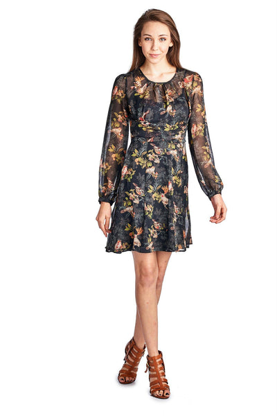 Women's Long Sleeve Printed Chiffon Lined Bird Floral Dress