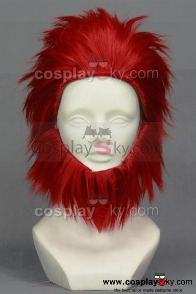 Fate/Zero Rider Cosplay Wig with Full Beard