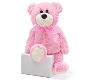 Teddy Bear Bear Pink 10""