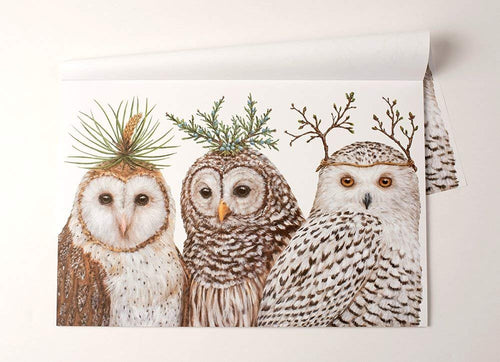 Paper Placemat, Winter Owls by Hester & Cook
