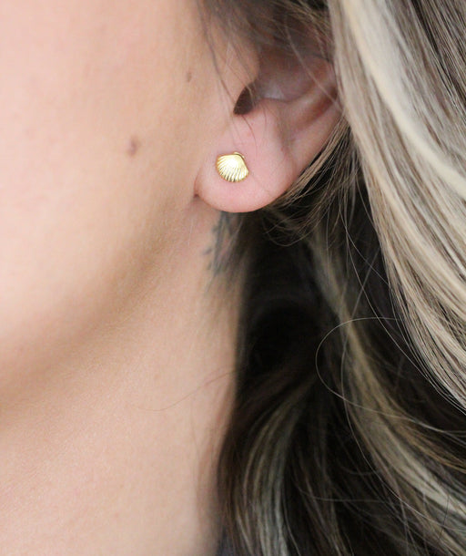 Mini Seashell Stud Earrings