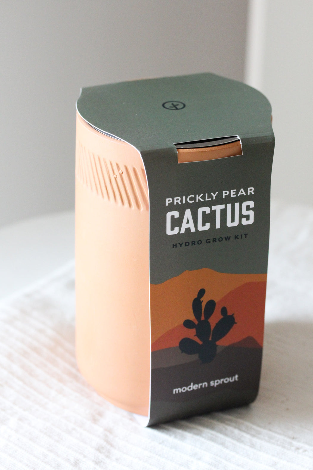 Terracotta Kit - Cactus