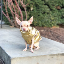 Metallic Gold Puffer Coat - Edie 1965