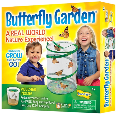 Image of Insect Lore Butterfly Garden packaging