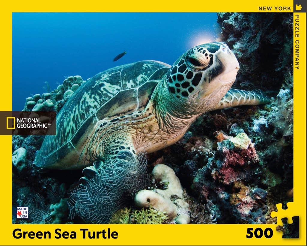 Image of 500 PC Green Sea Turtle Packaging