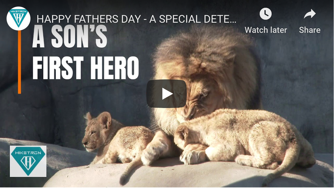 Happy Father's Day From Hiketron