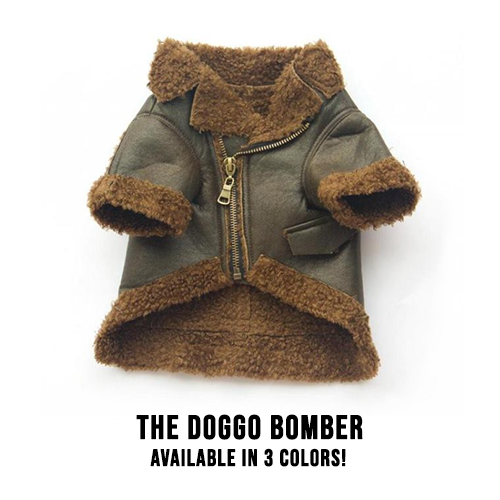 The Doggo Bomber