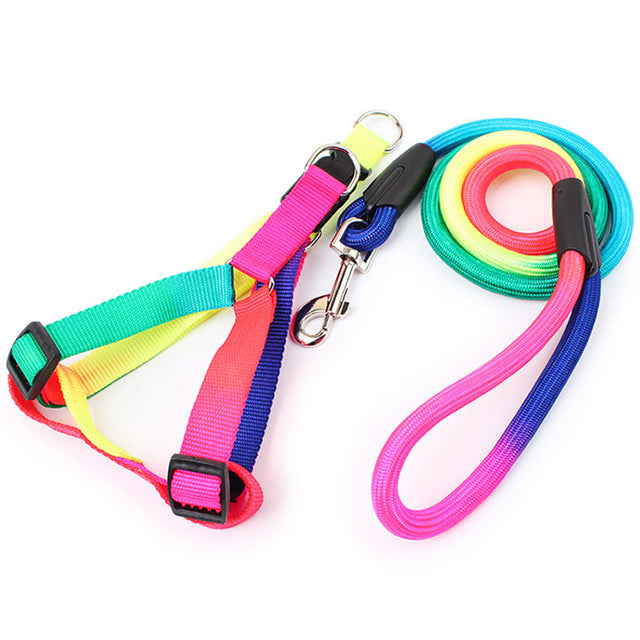 Tyedye Harness and Lead Set