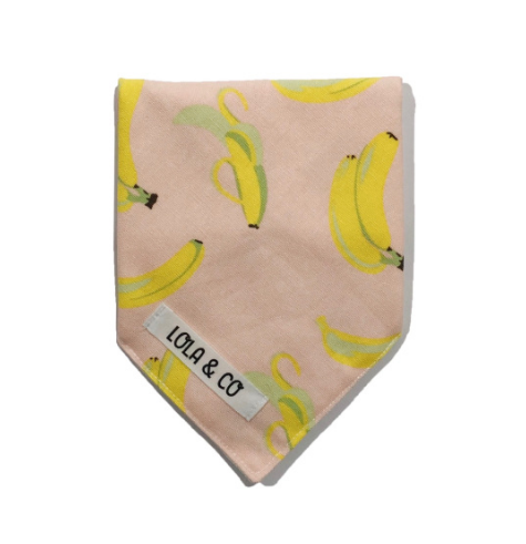 LOLA & CO DOG BANDANA - You're So Ap-PEAL-ing