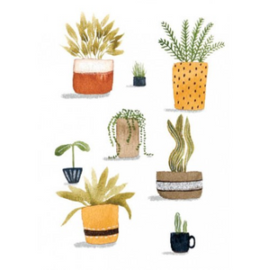 NUOVO - TANIA McCARTNEY GREETING CARD - POT PLANTS