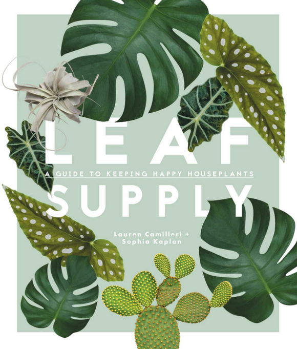 LEAF SUPPLY - A guide to keep happy houseplants