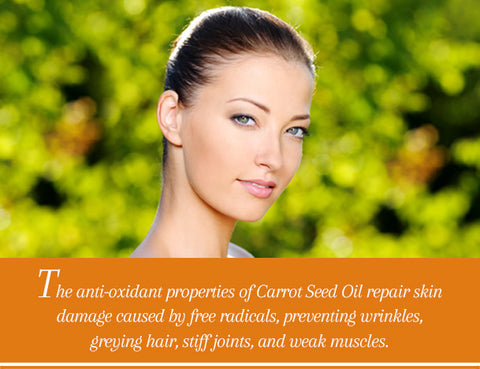 Carrot Seed Essential Oil Uses & Benefits - Essentially You Oils - Ottawa Ontario Canada