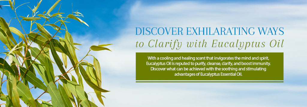 Eucalyptus Essential Oil - Recipes, Uses & Benefits - Essentially You Oils - Ottawa
