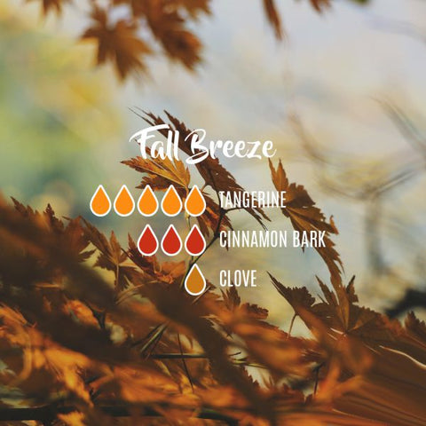 fall breeze, fall and autumn blends