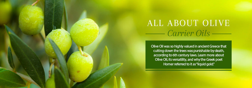 All About Olive Oil - Essentially You Oils - Ottawa Canada