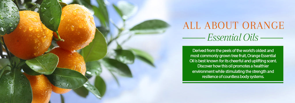Orange Essential Oil Blog Uses & Benefits- Essentially You Oils - Ottawa Canada