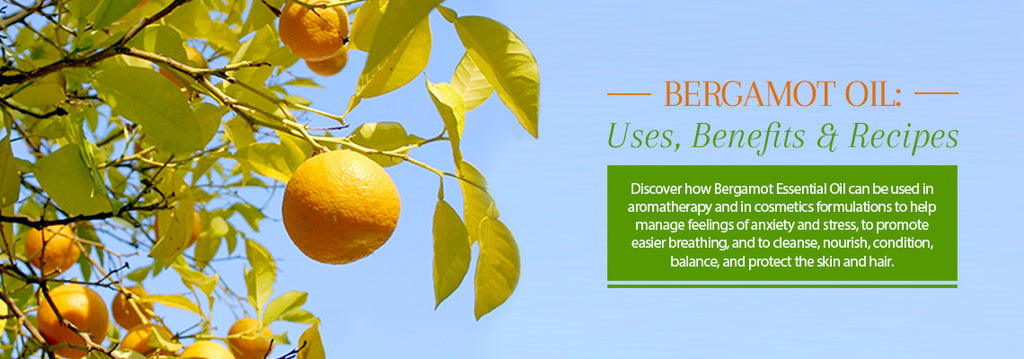 Bergamot Essential Oil - Uses & Benefits - Essentially You Oils - Ottawa