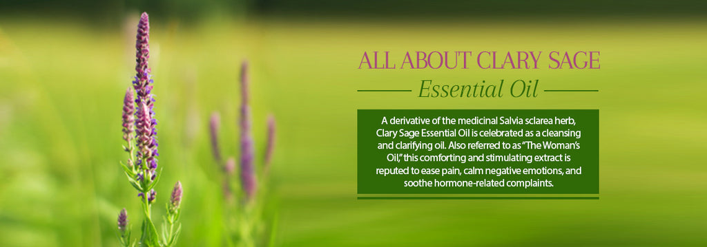 Clary Sage Essential Oil - Uses & Benefits - Essentially You Oils - Ottawa