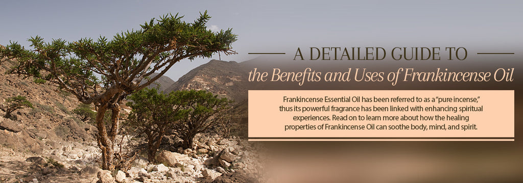 Frankincense Essential Oil - Uses & Benefits - Essentially You Oils - Ottawa