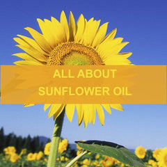 All About Sunflower Oil