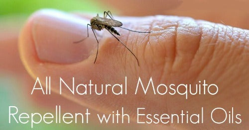 Bug Off!! Bug Repellent - Essentially You Oils