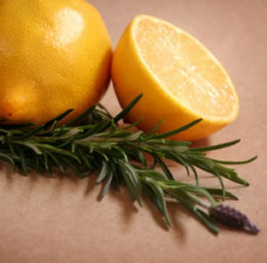 Citrus Twist Fragrance Oil - Essentially You Oils