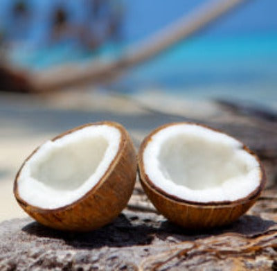 Coconut Cream Fragrance Oil - Essentially You Oils
