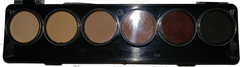 ToneZ Palette - 6 (5g) Palette LineWorkX Water Activated Makeup