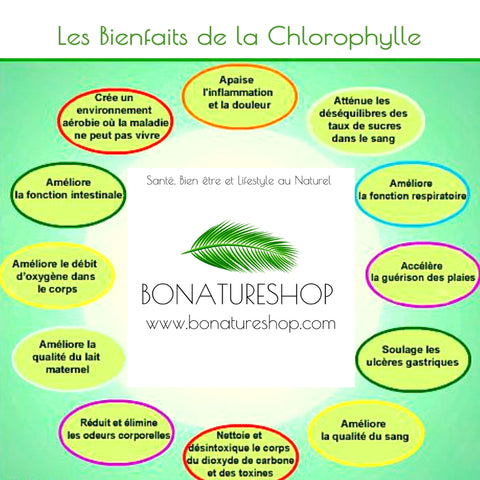 Chlorophylle bienfaits Bonatureshop