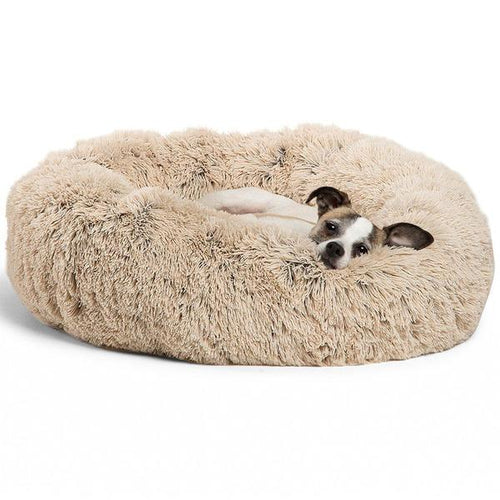 Paws™ cozy plush donut Pet Bed