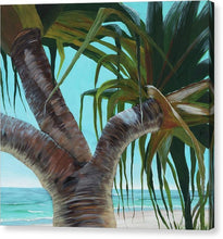 Pandanus Trunk - Canvas Print
