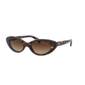 emporio armani eyewear, emporio armani, xeyes sunglass shop, brown cateye sunglasses, women sunglasses, fashion sunglasses, cateye sunglasses, emporio armani ea4143 glasses, ea4143